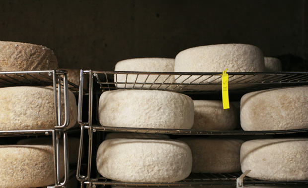 Fifth Town Cheese Aging